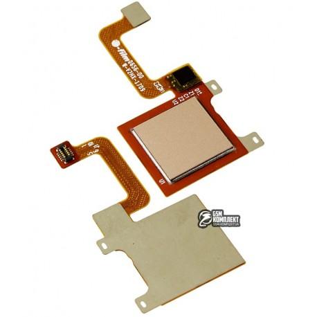 Шлейф для Huawei P9 Lite mini, Y6 Pro (2017), для сканера отпечатка пальца (Touch ID), золотистый