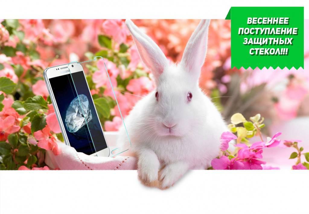 Комплект защитных стекол Dotfes E01 для APPLE iPhone 5/5s 20357
